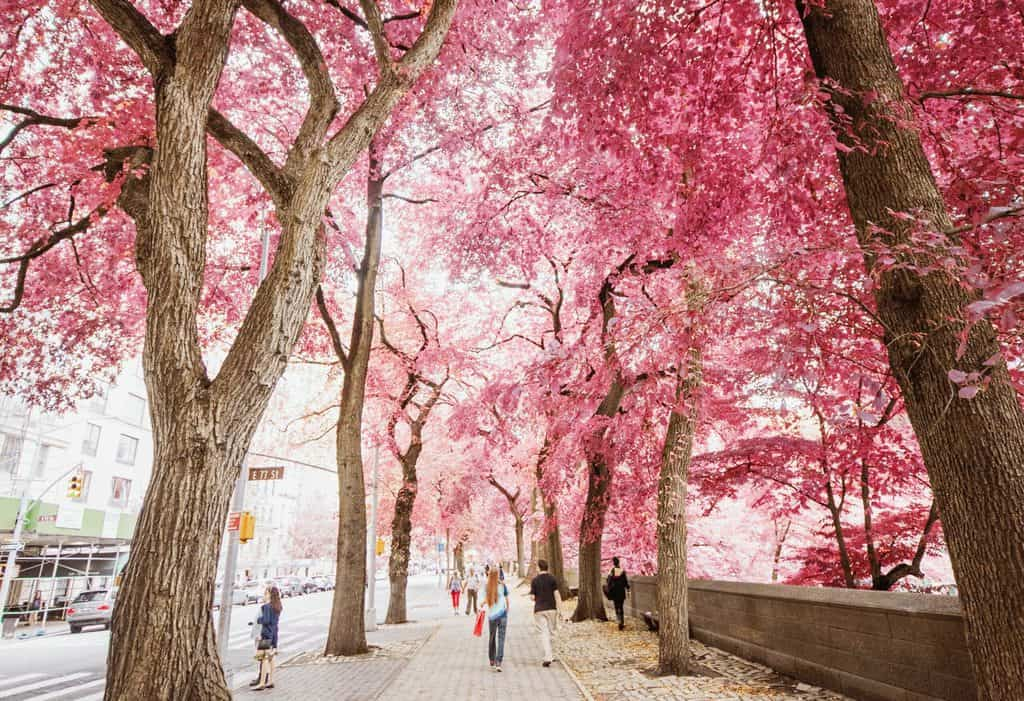 Top Spring Travel Nursing Placements